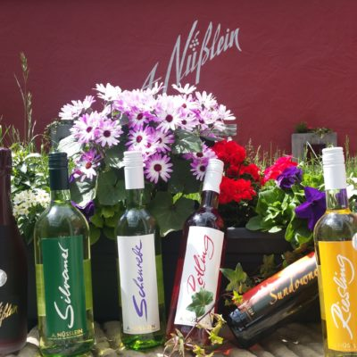 12er Sommer-Weinprobe